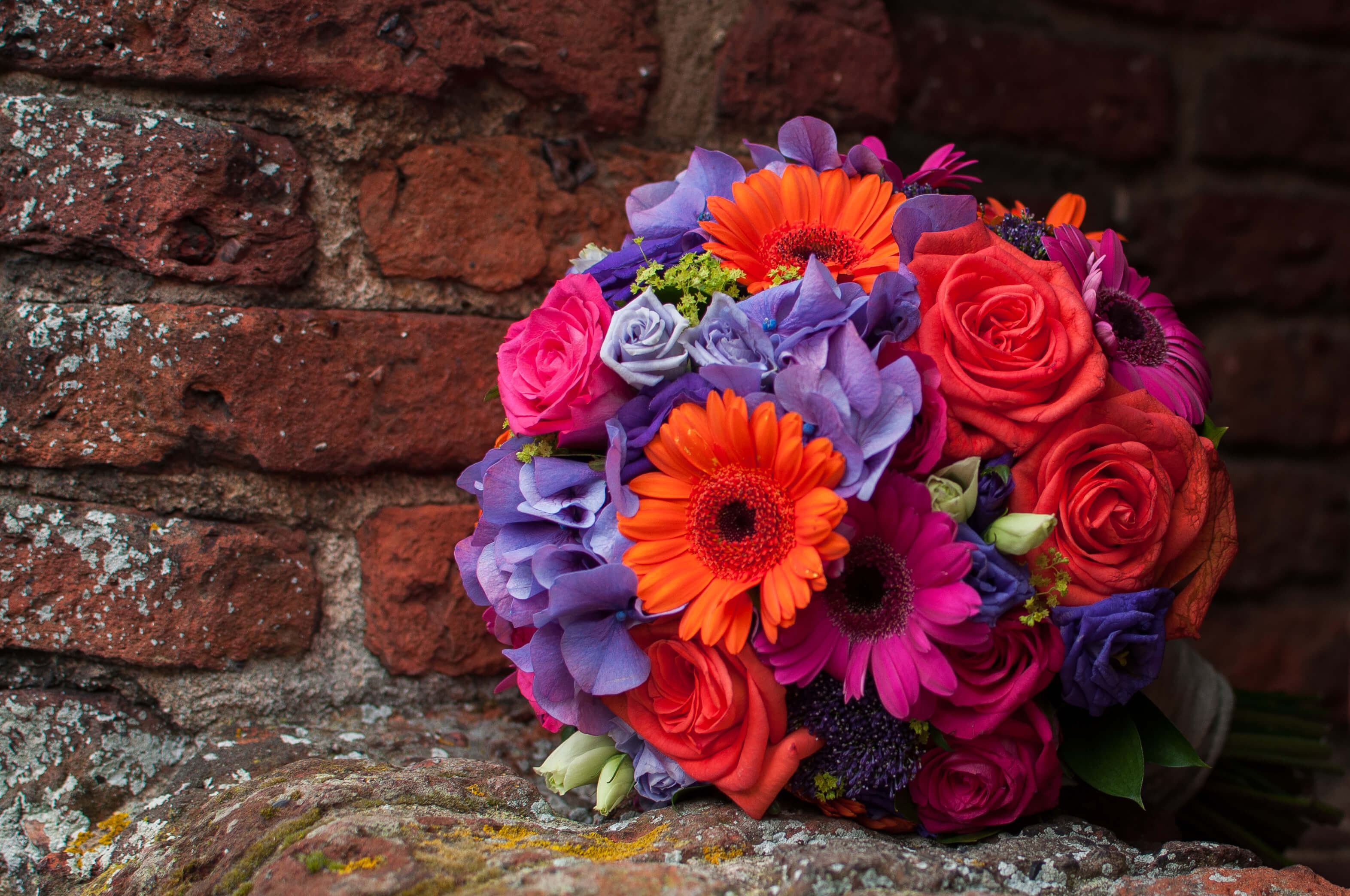 Wedding Photography Gallery 28